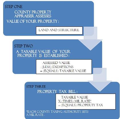 Property Tax.jpg